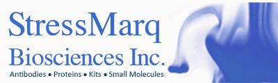 StressMarq Logo Blog Image
